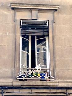 AvignonLife_17